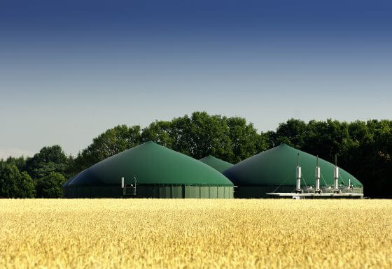 Biodujų jėgainių statyba